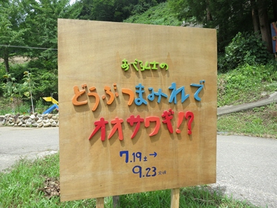 絵本と木の実の美術館1