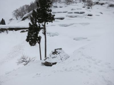 留守原の棚田冬11