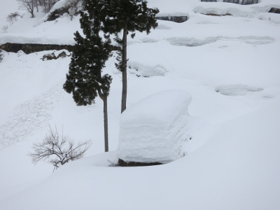 留守原の棚田冬6