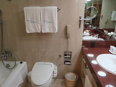 ホテルオークラ5